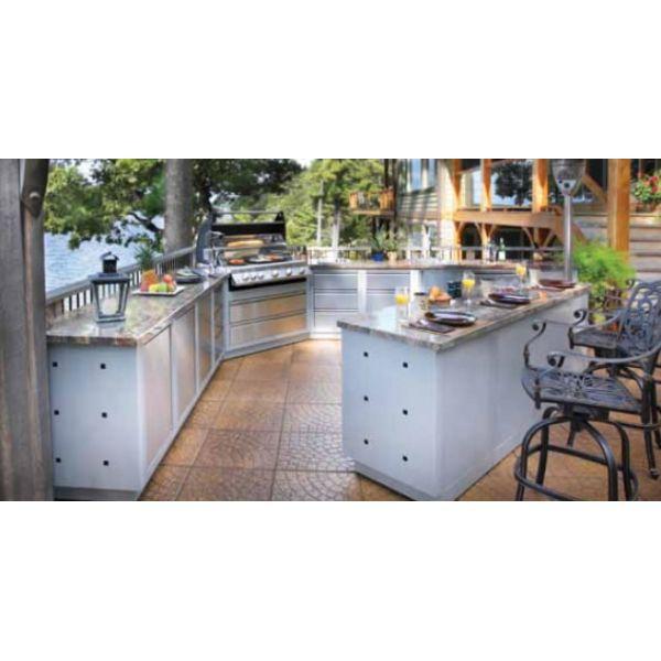 Module cuisine d 39 exterieur oasis napoleon bilex500 for Module pour cuisine exterieure