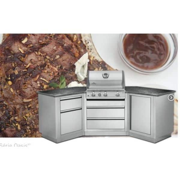 Composition de cuisine exterieure napoleon grill oasis 200 - Composition du sel de cuisine ...